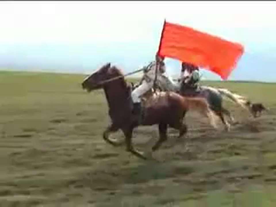 Kırgız Atları Dagkurduwebtv