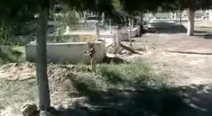 Buharkent Asri Mezarlık
