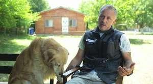 evde köpek eğitimi nasıl olur?