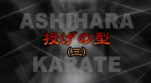 Budokai-Do Ashihara Karate