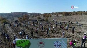 İşte Türkiye'nin yeni kolluk gücü: Takviye Hazır Kuvvet