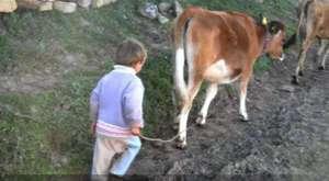 Helal et Hakkını Bağışla beni..ağlatan Türkü