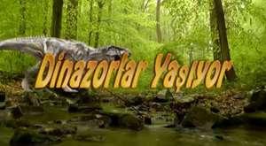 Canlı Dinazor - Dahi Organizasyon - 0 216 517 0 777