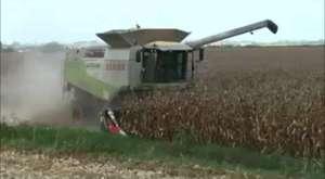 Genç çiftçilere hibe desteği ile ilgili her şey