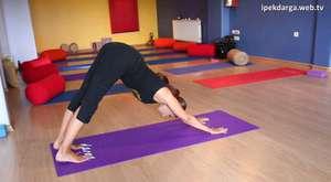 Yoga ile burçların bağlantısı var mı?