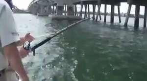 Büyük Yem İle Büyük Balık Yakalamak