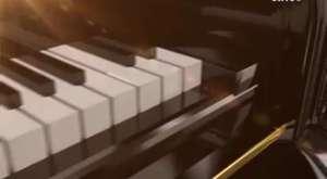 Tango Potpori - Serap Yenici