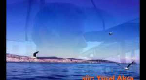 ayvalık buluşması video-2