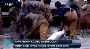 2 Günde 8 Ton Balığa El Konuldu (22.03.2013)