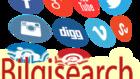 bilgisearch