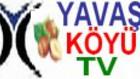 yavaskoyu
