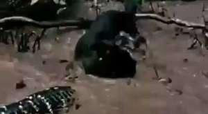 Madencinin Bir Günü - Al Jazeera Türk Belgesel ( HD )