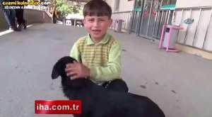 Yaralı Köpeğini Acil Servise Götüren Çocuğun Örnek Davranışı