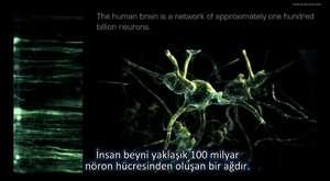 Ayna Nöronlar (Türlçe Altyazılı)