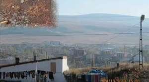 Ardahan Bal Festivali 2014 @ MEHMET ALİ ARSLAN Haber News