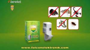 Bereket TV Falcon Elektronik