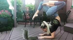 Bu kediyi üzmeyin artık !!!