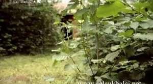 selçuk balcı