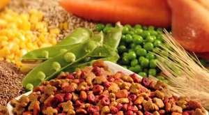Tropikal Pet - Tropikal Bahçe ve Evcil Hayvan Ürünleri Ticaret Sanayi