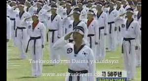 Taekwondo toplu gosteri