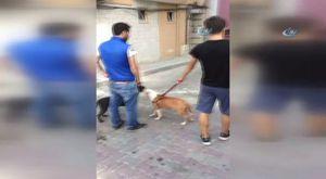 Bursa'da ortalık savaş alanına döndü: 1 ölü 1 yaralı