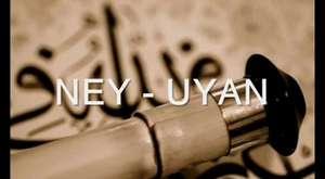 Coşku ve Heyecana Bağlı Anlatım ve Zamirler- Turkceciler