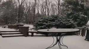 Kar Yağışının Hızlandırılmış Biçimi