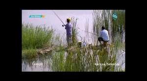 Karasu Televizyonu Karasu Sahil Düzenlemesi