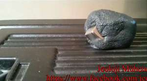 Manyetik macun metal küpü böyle yuttu!