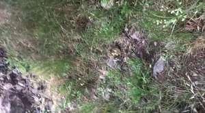 Sivrice Çanakcı Köyü yolu Akarsu