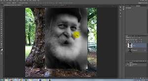 Photoshop, Ağaca Yüz Yapmak