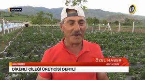 Cumhuriyet Bayramı - 29 Ekim 2015