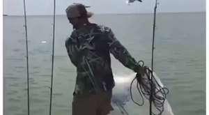 ali bayrak zıpkın avları 1