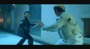 Donnie Yen vs Yu xing