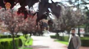 Afyonkarahisar İli Tanıtım Videosu | Bölüm 2