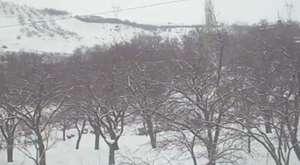Ayvalı'dan kar manzaları