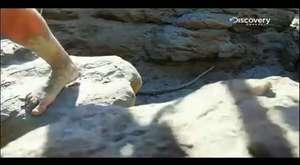 İnsan Doğaya Karşı - Arizona Çölü , Bear Grylls HD