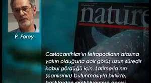 EVRİMCİLERİN SAHTE DELİLLERİ 2 4_4 -