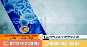 Uzman Herbalist Kemal Haluk Cebe SAw Palmetto`yu Öneriyor!