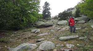BESAŞ Çalışanları ile doğa yürüyüşümüz