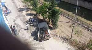 Maçka'da ağaç katliamı