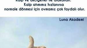 Ahmet Özhan Veysel Karani