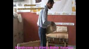 Rize Fındıklı Gürcü Düzü Kovansan Karakovan
