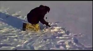 Kıyıda balık mı yok? Aç, açıl..