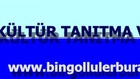 bingolkulturtelevizyon