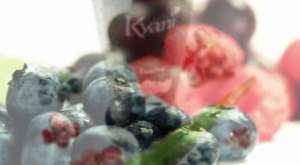 Kyani Corp. Besin Takviyesi Ürünleri