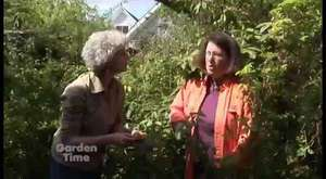 RHS Chelsea Flower Show 2014 - Episode 15