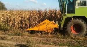 mısır ekim ve hasat işlemlerim