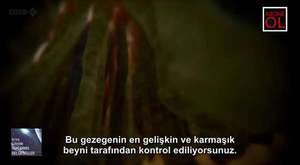 İnside the Human Body 2 || İnsan Atlası 2 || Tr Altyazı