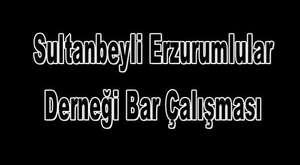 Sultanbeyli Erzurumlular Derneği Yön.Kur.